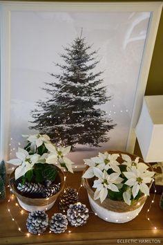 Letzte weihnachtliche Inspiration: für alle, die noch nach einer schnellen Deko-Idee suchen