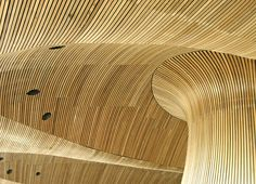 Roof of Senedd, Cardiff, Wales