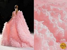 Вот это я понимаю - мода! 22 изумительных платья, которые создавала сама природа.