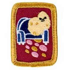 Girl Scout merit badge for couch potatoes
