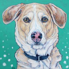 """Kip the German Shepherd and Treeing Walker Coonhound Mixed Breed Dog Custom Pet Portrait Painting in Acrylic Paint on 12"""" x 12"""" Canvas from Pet Portraits by Bethany. #petportrait #custmopetportrait #petart #dogart #dogportrait #Mutts #Mutt #Coonhound #Hounds"""