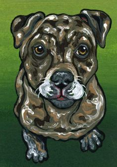 ACEO ATC Catahoula Hound Dog Puppy Art Original Miniature Painting-Carla Smale #Realism