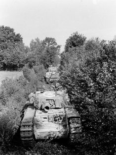 Photograph: An Avre moving through close country. From a photograph album containing 211 photographs compiled by Maj cm) Fine Art Print Framed, Poster, Canvas Prints, Puzzles, Photo Gifts and Wall Art Ww2 Pictures, Ww2 Photos, Military Pictures, D Day Normandy, Country Dates, British Army, British Tanks, Royal Engineers, Sherman Tank