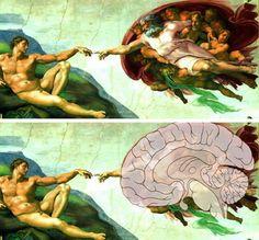 Sabe-se que Michelangelo era grande conhecedor e apreciador do corpo humano. Segundo os pesquisadores, de forma sublime o artista transformo...