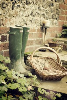 The Cottage  #wellies  √