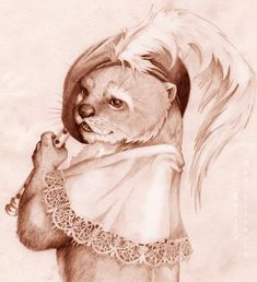 pencil drawings of otters - Google Search
