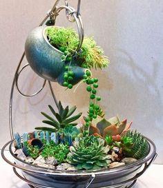 Magical DIY Succulent Fairy Garden Ideas DIY Garden Yard Art When growing your own lawn yard ar Succulent Gardening, Garden Terrarium, Cacti And Succulents, Planting Succulents, Container Gardening, Planting Flowers, Terrariums, Succulent Seeds, Succulent Arrangements