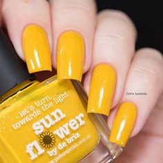"""Sunflower"" by @picturepolish and @de_briz"