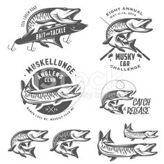 Set of muskellunge musky fishing design elements royalty-free stock vector art