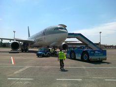 Qatar Cargo Airbus A330 in Budapest II.