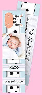 Faire-part naissance réf. N20101 chez monFairePart.com