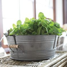 Haus Design: April 2012...Herb Perfection in a Perfect Tin Bucket...