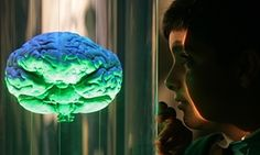 Secrets of the teenage brain: a psychologist's guide for teachers | Teacher Network | The Guardian