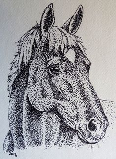 Horse Portrait by IckyDog.deviantart.com on @deviantART