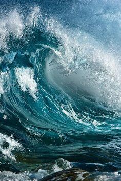 """The world's finest wilderness lies beneath the waves..."" — Wyland"