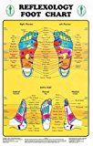 Buy reflexology chart laminated