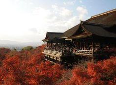 Kyoto: Kiyomizu-dera, a complex of Buddhist temples |japan-experience.com