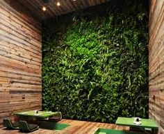 funky sport supplement store designs - Google Search