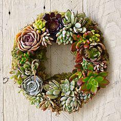 Mixed Succulent Wreath