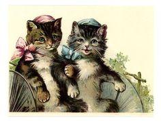 Ye olde cats