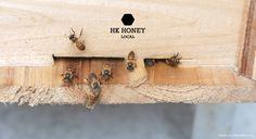 hk-honey_2