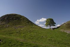 Scenic Sections of Hadrian's Wall - the famous Sycamore Gap