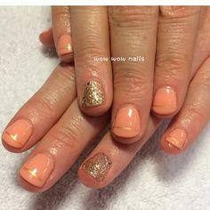 Robyn's nail design! #springnails #coral #peachy #goldaccent #accentnail #featurednail #nailart #nailporn #nailgasm #nailjunkie #fashion #beauty #wowwownails #toronto