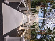 Elegant Summer Ceremony at the Crystal Gardens- Navy Pier Design by Anthony Gowder Designs