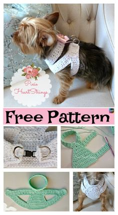 Most doggies need a harness, or else they would run wild. So here, we will be showing you how to make this Crocheted Dog Harness that they will be sure to love! All you need to do to find the free pattern for this which is quite simple . Crochet Dog Clothes, Crochet Dog Sweater, Pet Clothes, Dog Clothing, Crochet Dog Patterns, Dog Clothes Patterns, Dog Sweaters, Dog Coats, Dog Harness