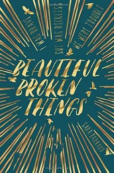 book cover of   Beautiful Broken Things