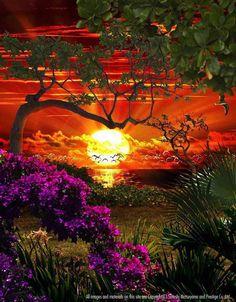 "Softly as in a morning sunrise"" By Satoshi Matsuyama"