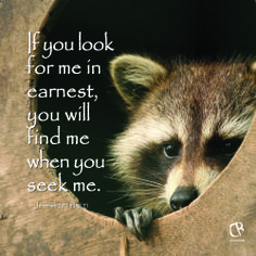 If you look for me in earnest, you will find me when you seek me. ~ Jeremiah 29:13 #NLT #Bible verse | CrossRiverMedia.com