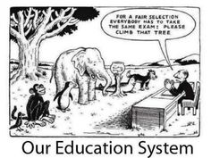 Funny but true. A little humor around standardized testing in education :) Education System, Teacher Humor, Teacher Quotes, Teacher Comics, Teacher Resources, Education Quotes, Albert Einstein Quotes Education, Learning Quotes, Me Quotes