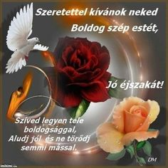 Good Morning, Night, Floral, Flowers, Plants, Good Night Greetings, Good Day, Bonjour, Bom Dia