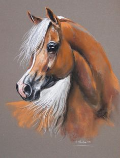 Palomino Arabian Horse painting. Beautiful face and sweet pink nose. Please also visit www.JustForYouPropheticArt.com for more colorful art you might like to pin. Thanks for looking!