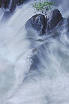 William Neill Yosemite