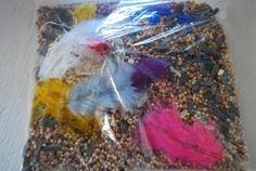 Birds of a Feather Sensory Bag- Familylicious Sensory Bags, Sensory Bottles, Sensory Activities, Infant Activities, Sensory Play, Sensory Table, Infant Classroom, Cool Baby Stuff, Bird Feathers
