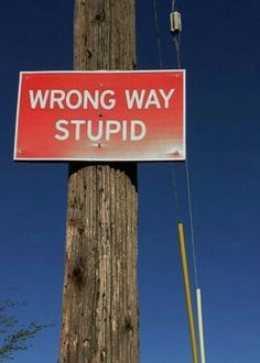 Sign is listed (or ranked) 4 on the list 20 Extremely Helpful Signs That Will Make You Laugh Silly Jokes, Stupid Funny, Funny Jokes, Funny Stuff, Hilarious Sayings, Hilarious Animals, 9gag Funny, Funny Animal, Funny Street Signs