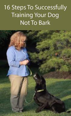 dog stuff,dog ideas,dog care,dog tips,dog grooming Training Your Puppy, Dog Training Tips, Training Schedule, Dog Minding, Stop Dog Barking, Easiest Dogs To Train, Dog Training Techniques, Dog Hacks, Dog Behavior