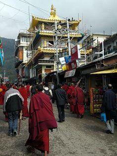 Tibetan temple and monks, Dharamsala, India