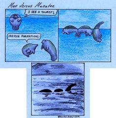 The truth about Nessie
