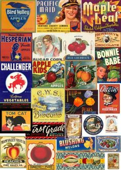 CD com 550 imagens digitalizadas de rótulos e etiquetas usadas em embalagens como latas, engradados ou vidros antigos de comidas e alimentos variados. A maior parte é da década de 40 e 50 e são bem interessantes e raras. O CD contém algumas propagandas antigas referente ao tema, o forte são os rótulos.