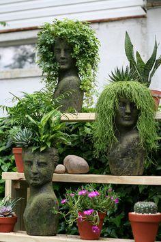 These are perfect Indoor Garden, Indoor Plants, Outdoor Gardens, Dream Garden, Garden Art, Garden Design, Succulents Garden, Planting Flowers, Hanging Succulents