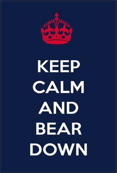 Keep Calm and Bear Down Arizona Wildcats Bumper Sticker Window Laptop Car Decal Vinyl Ipad