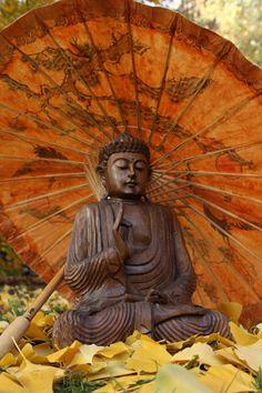 Buddha statue by Benjamin Balázs Lotus Buddha, Art Buddha, Buddha Kunst, Buddha Zen, Buddha Statues, Gautama Buddha, Buddha Buddhism, Buddhist Art, Yoga Studio Design