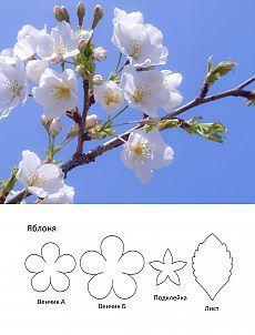 Выкройки для цветов. Яблоня. Фиалка :: Втворчестве.ru