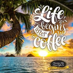 Life Begins After Coffee! - Kona Coffee Memes and Quotes for Coffee Lovers from Hawaiian Isles Kona Coffee Company. Honolulu, Hawaii. Cute and Funny Coffee Sayings, Truths and Humor for Breakfast, Morning Time and Coffee Break. Aloha!