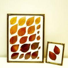 tørkede blader + gamle rammer.  dried leaves and old frames.   #autumn #leaves #DIY #art #colors