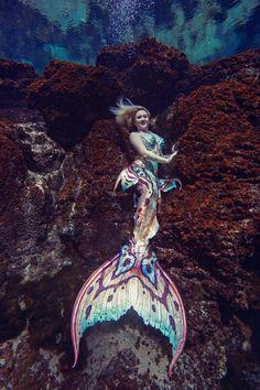 Fantasy Mermaids, Unicorns And Mermaids, Real Mermaids, Mermaids And Mermen, Siren Mermaid, Mermaid Cove, Mermaid Images, Mermaid Pictures, Mermaid Swimming