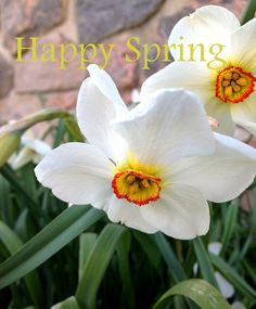 Moving Forward : Signs of Spring @ the Farm